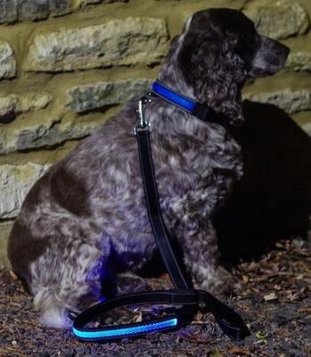 Hondenriem - Blauw