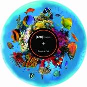 Kleurenwiel Tropische Vissen voor Aura led projector