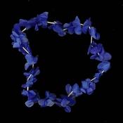 Hawaiislinger Blauw
