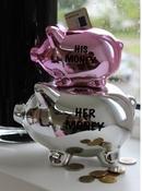 His/Her Spaarpot - Piggy - Zilver/Roze